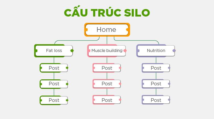 cấu trúc silo website